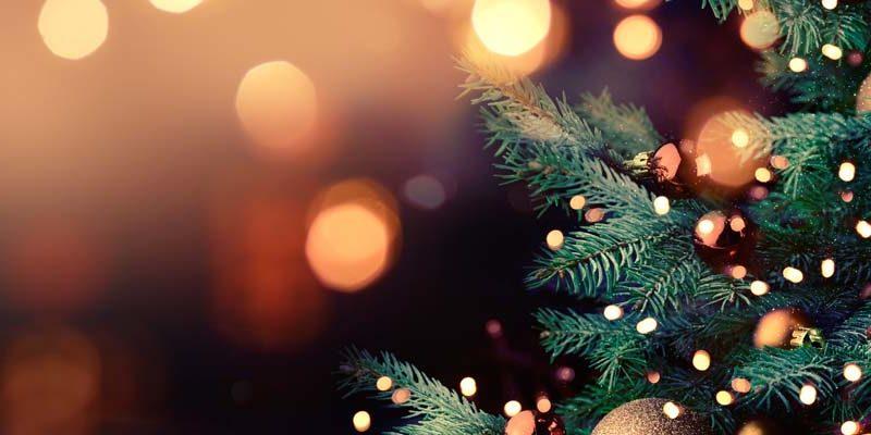 TNG:s julklapp 2019: Bidrag till en hållbar arbetsmarknad