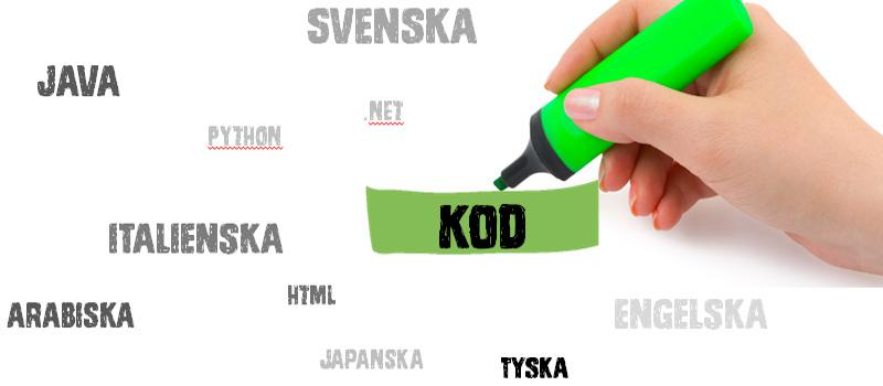 Trend: Digitaliseringen ökar behovet av innovativa IT-specialister och programmerare. Kod blir ett globalt språk, när företag rekryterar.