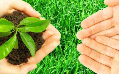 TNG och hållbarhet: På TNG genomströmmar arbetet med hållbarhet i allt vi gör