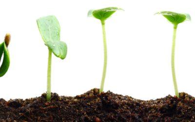 Vårt CSR-engagemang på TNG