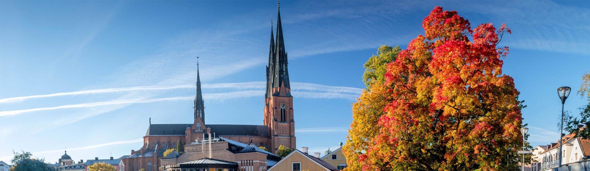 Bemanningsföretag i Uppsala – fördomsfri rekrytering och bemanning