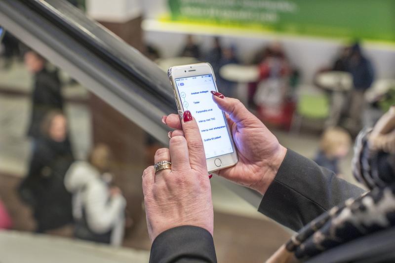 skräddarsydda tester hand mobil kopiera